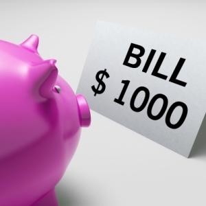 piggybank-bills-Stuart-Miles